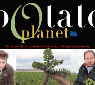 Potato planet 81